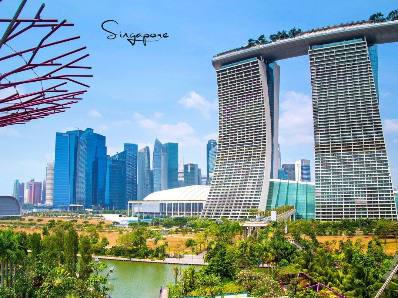 singapore expensive